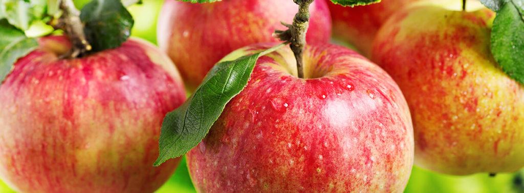 appels verpakken