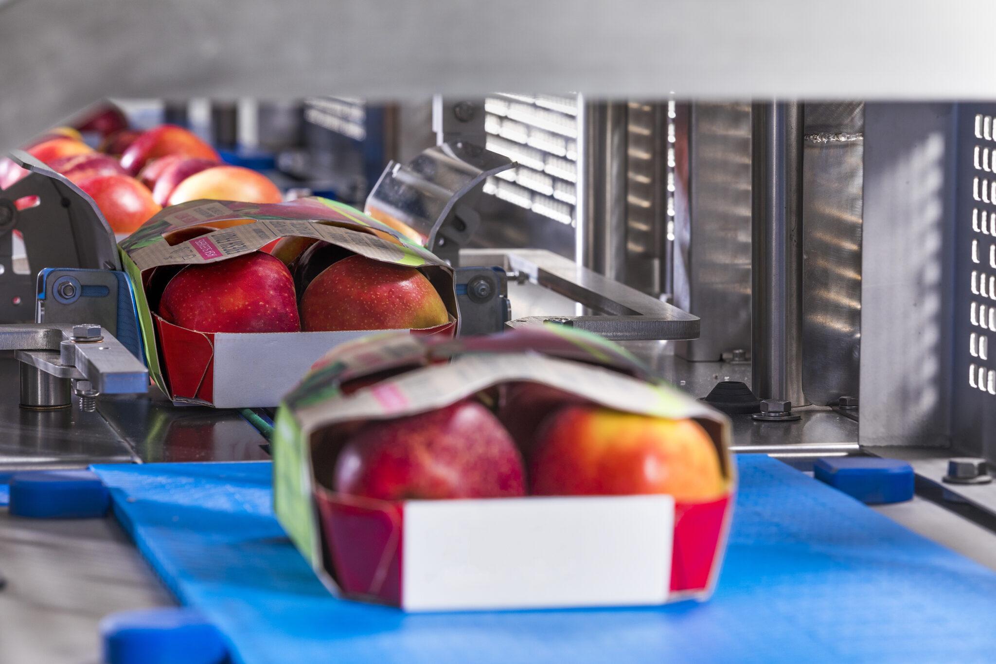 Sleever appelen