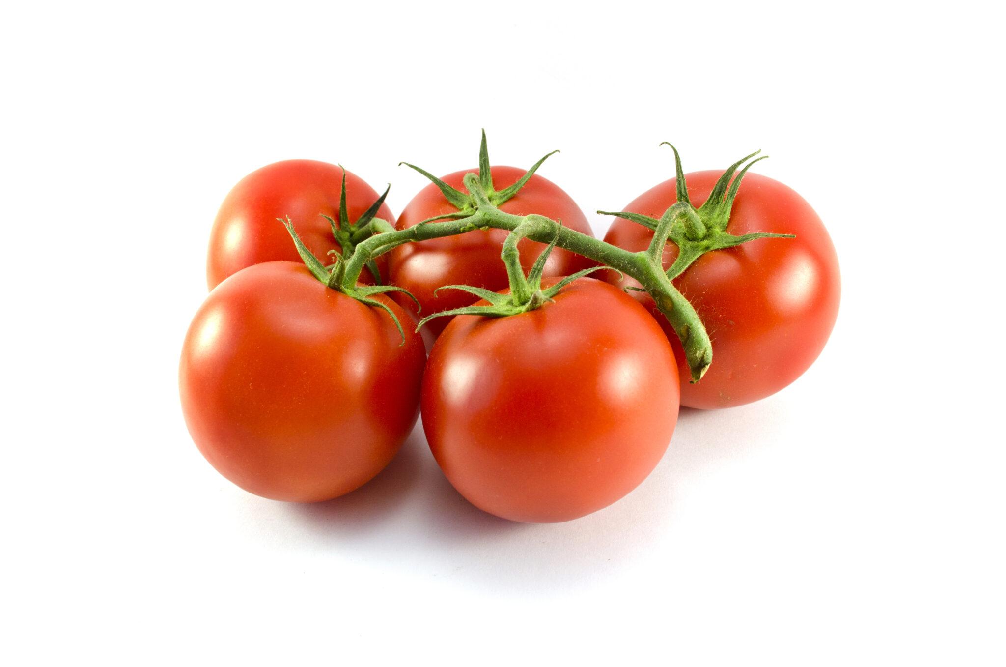 Kleine tros tomaten