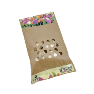 Bag 2 paper flowerbulbs