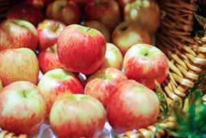 shutterstock_202087072 Apfel Korb Ernte