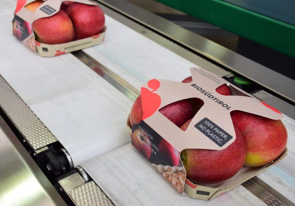 Apples sleeve