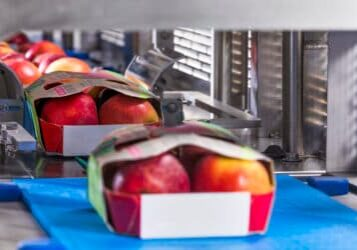JASA_sleever-apples-scaled-custom_crop